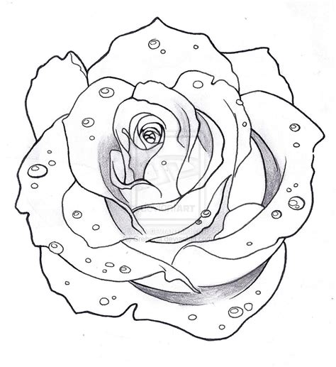 outline of rose tattoo images designs