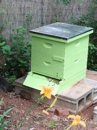Backyard Honey Bee Hive by 1000 Images About Backyard Beekeeping Tips On
