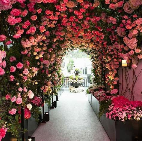 flower tunnel 20 stunning nature tunnels that are like walking through a fairy tale