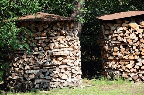 lagerung brennholz brennholz richtig lagern so geht s aktion holz