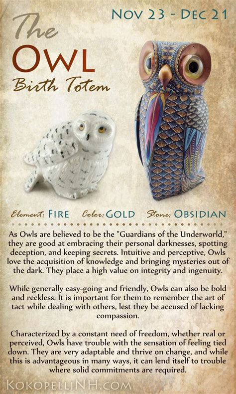 owl symbolism pure spirit 590 best magical animal totems images on pinterest