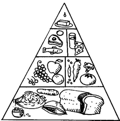 Food Pyramid Coloring Page Kindergarten | the food pyramid with a nice array of coloring page kids