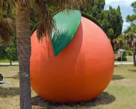 and the big orange a tale of unity and bravery books big orange at melbourne on the east coast of florida by