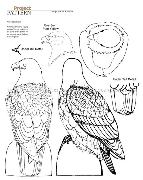 pattern for wood carving bald eagle carving wood carving patterns woodarchivist