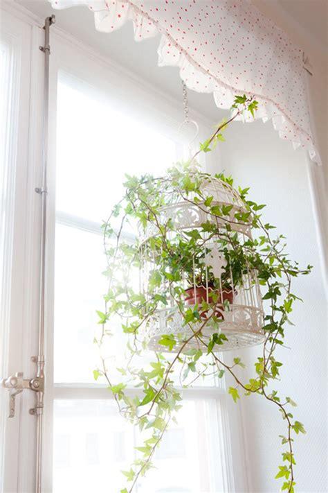 how to decorate a birdcage home decor flower pot birdcage decor