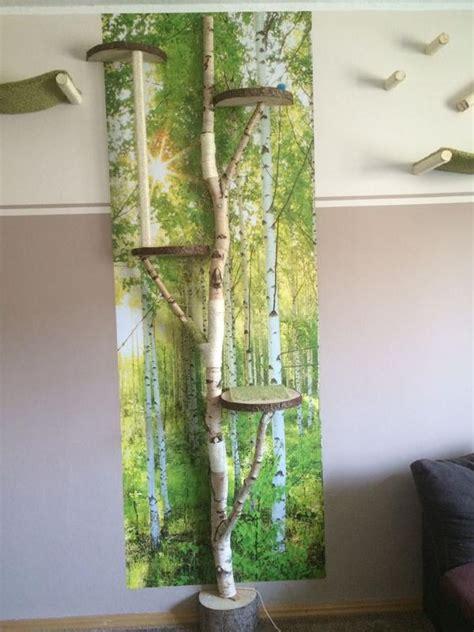 birkenstamm kaufen deko deko birken 228 ste birkenst 228 mme birkenstamm kratzbaum
