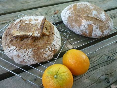 hydration junkie exorphin junkie whole wheat bread with citrus fiber to