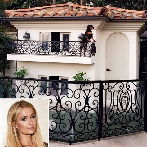 in the dog house tallahassee magazine july august 2016 paris hilton shares photos of lavish dog house people com