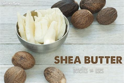 Shea Butter Benefits by 21 Shea Butter Benefits And Uses Of Chance