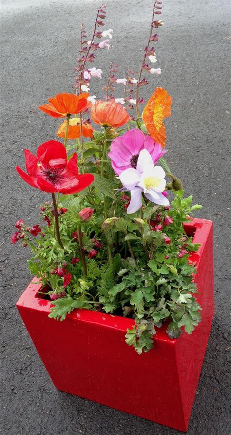 Custom Planter by Custom Planters Sloat Garden Center