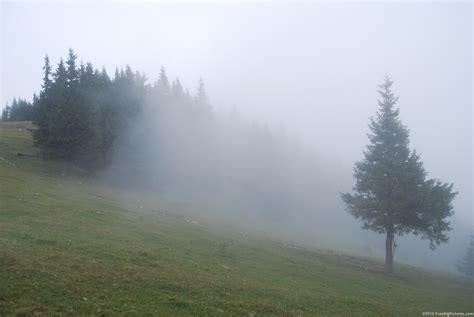foggy s mod idea foggy weather cd projekt red forums