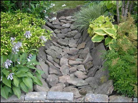 drainage ditch landscaping ideas  garden