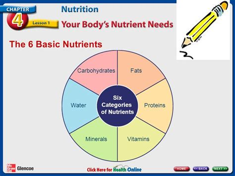 6 protein categories chapter 4 nutrition lesson 1 your s nutrient needs