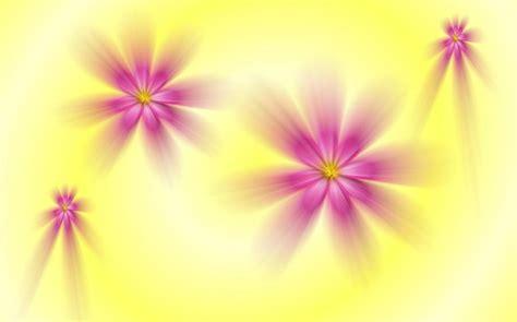 flower wallpaper effect photo effects flowers