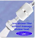 Shower Power Without by Cqe Sp 00800 Luxury Shower Power Shower Filter By