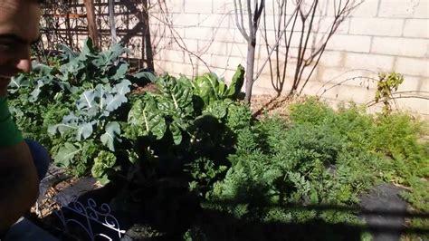 how to winter garden southern california