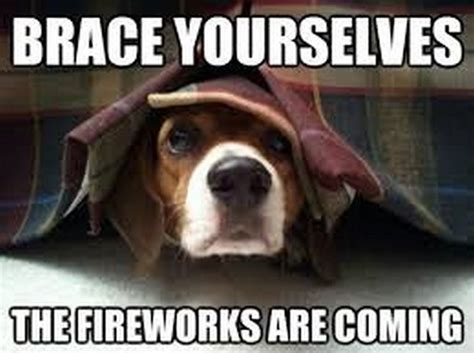 Funny 4th Of July Memes - 4th of july funny fireworks special