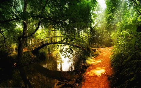 small wallpaper bridge and small stream 1920 x 1200 forest