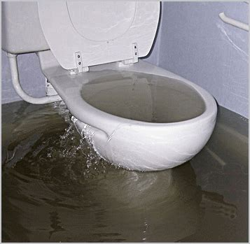 toilet backed up into bathtub sink and toilet drain service hawaii plumbing services