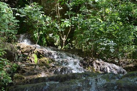 gorman falls texas map my enjoying a dip in the river beneath gorman falls picture of gorman falls bend