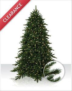 1000 images about christmas tree market trees on
