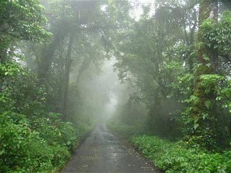 imagenes de lluvia wallpaper banco de imagenes y fotos gratis paisajes con lluvia parte 4