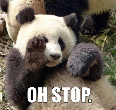 Oh Stop It Meme - oh stop panda know your meme