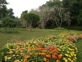 What Is A Botanical Garden Henarathgoda Botanical Garden