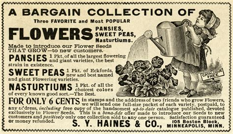 Gardening Ads Garden Clipart Commercial Use Free Vintage Illustrations