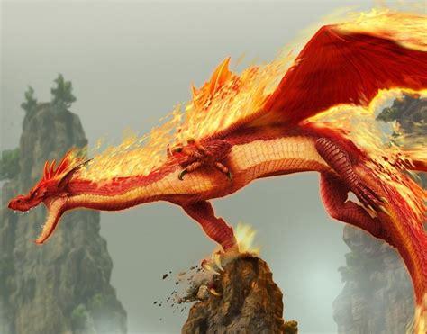 los dragones los dragones febrero 2013