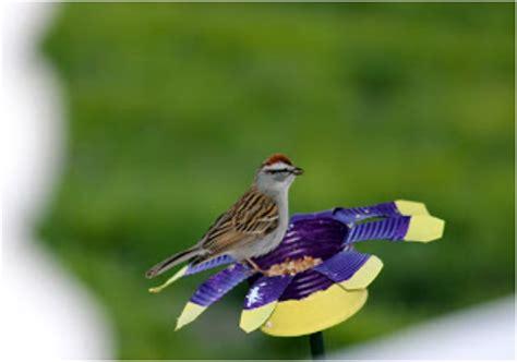 top 10 eco friendly diy bird feeders top inspired