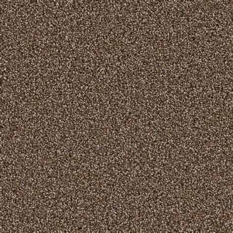 Home Decorators Carpet by Home Decorators Collection Carpet Sle Palace Ii