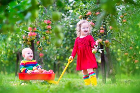 garten kinder kindgerechter garten sicherheit beim spielen und toben