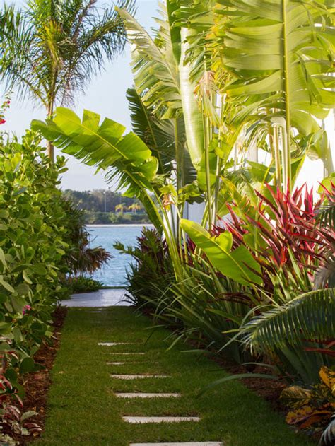 Tropical Backyard Pictures by Tropical Garden Houzz