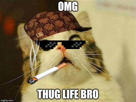 Top 26 thug life cat Memes   Thug Life Meme