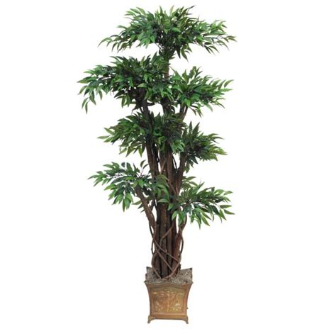 Overstock Trees - 4 foot tropical ruscus topiary tree potted overstock 1878