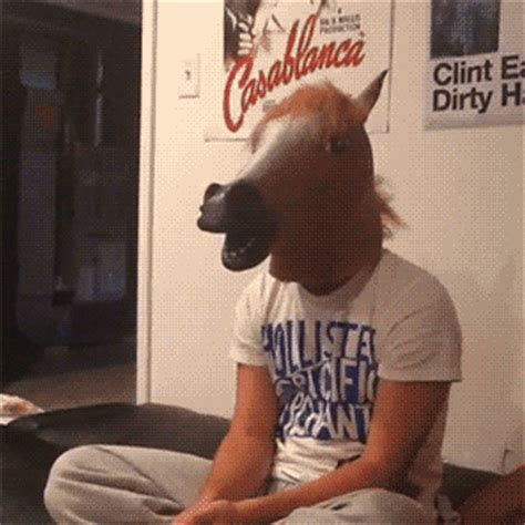 Meme Horse Head - horse head gif tumblr