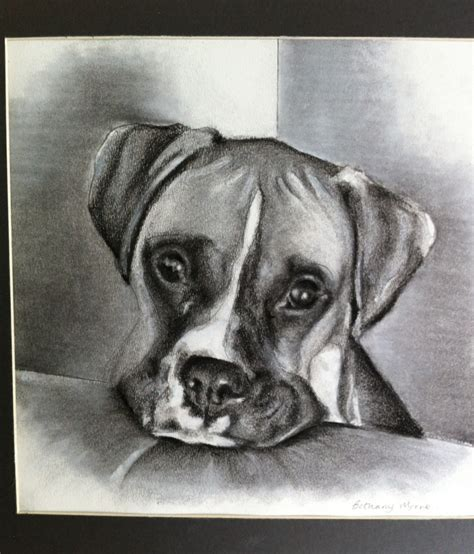 ideas for drawing the gallery for gt easy charcoal drawings for beginners
