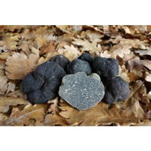 cuisiner les truffes fraiches truffes noires fraiches morceaux tuber m 233 lanosporum