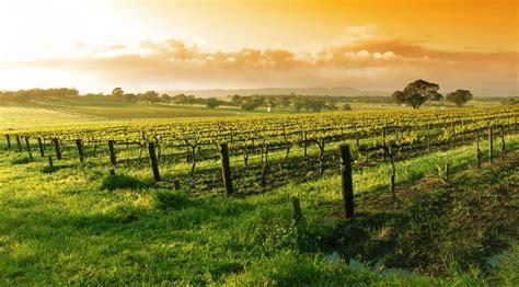 friendly wineries napa napa valley explore napa valley