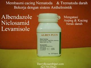 Obat Cacing Pada Anjing albenplus obat cacing mengatasi anjing kucing berak darah