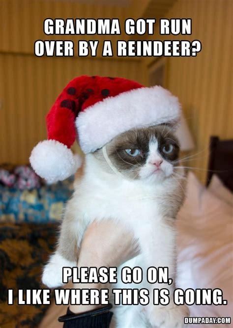 Christmas Cat Memes - grandma got run over by a reindeer grumpy cat funny