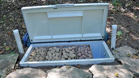 backyard chest store your summer harvest in a diy backyard root cellar