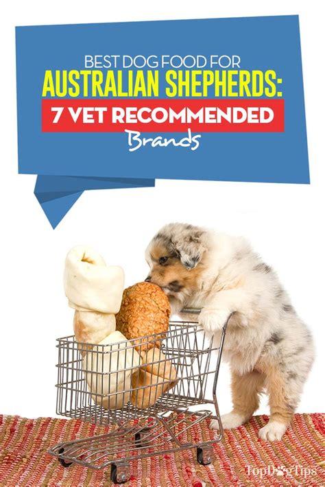 best food for dogs best food for australian shepherds 7 vet recommended