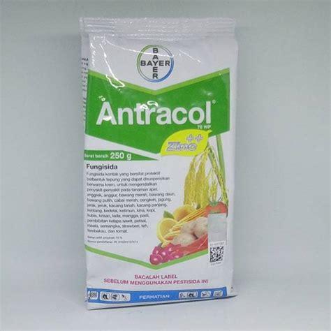 Fungisida Antracol 70wp 1000 Gram Jual Fungisida Antracol 70wp 250 Gram Bibit