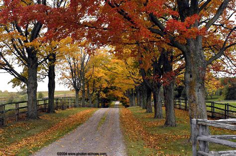 images  autumn