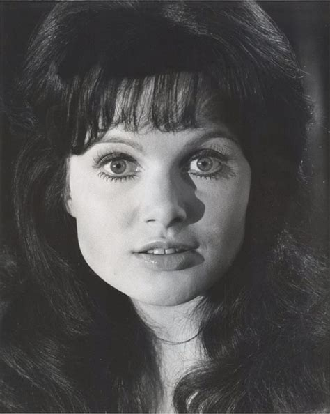 Celestino Madeline Carry All L by Madeline Smith Actor Cinemagia Ro