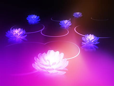 lotus wallpaper android honeycomb 3 0 lotus wallpapers android honeycomb