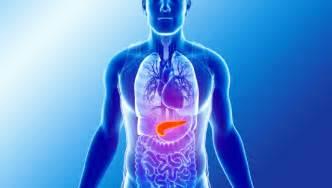 wann erholt sich die leber nach alkohol akute bauchspeicheldr 252 senentz 252 ndung akute pankreatitis