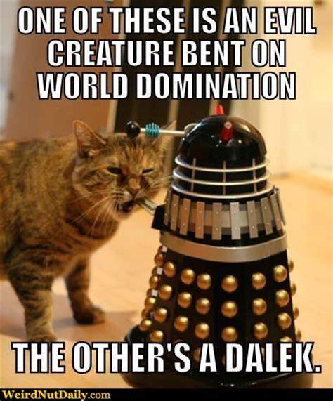 Doctor Who Cat Meme - doctor who dalek memes